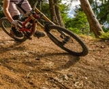 BMX+ Freestyle